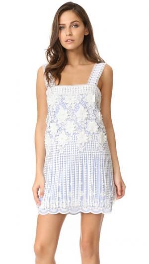 Платье Fulton Alexis. Цвет: вышивка в полоску