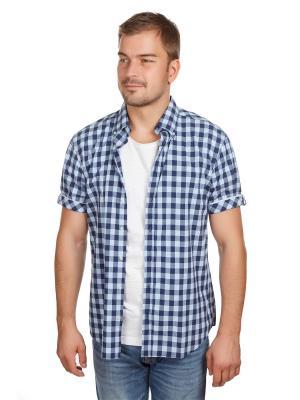 Рубашка Poplin McNeal. Цвет: темно-синий, голубой