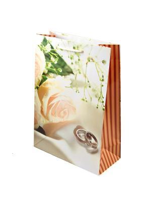 Комплект пакетов из 12шт. 22*31см Русские подарки. Цвет: белый