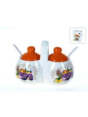 Набор банок для специй Прованс, Polystar. Цвет: оранжевый