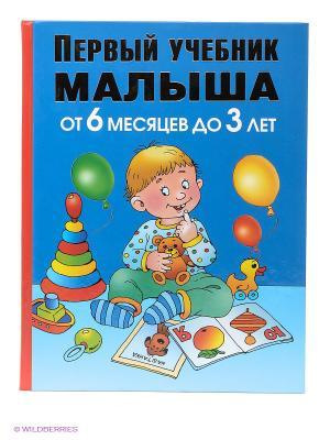 Первый учебник малыша. От 6 месяцев до 3 лет Издательство АСТ. Цвет: синий