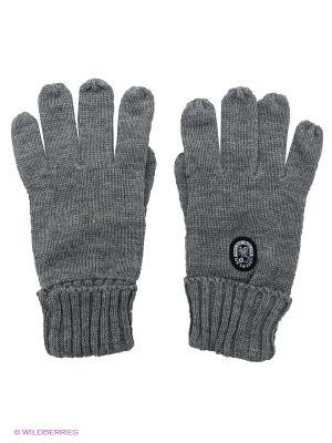 Перчатки Scorpion Bay. Цвет: серый
