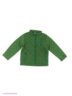 Куртка JERRY JOY. Цвет: зеленый