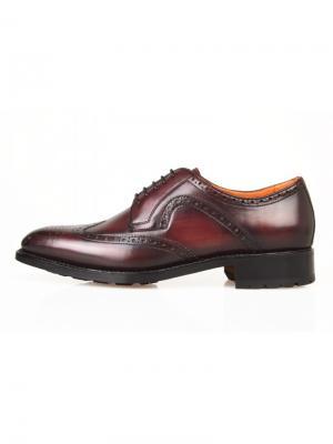 Туфли Sandro G. Цвет: темно-бордовый