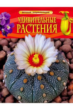 Удивительные растения Росмэн. Цвет: none