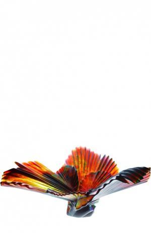 Ваза для фруктов Palm Daum. Цвет: бесцветный
