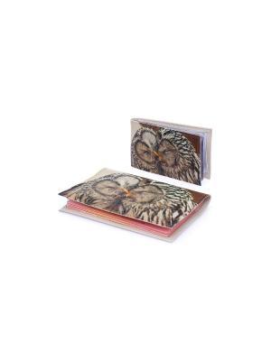 Комплект Owls in love2 (Обложка на паспорт+визитница) Eshemoda. Цвет: коричневый