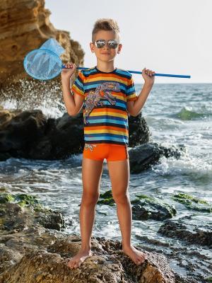 Плавки-шорты для мальчиков Nirey. Цвет: оранжевый