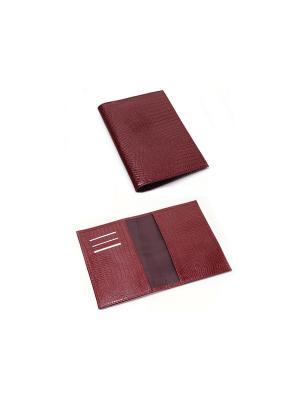 Обложка паспорта Вектор. Цвет: красный