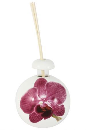 Диффузор Орхидея Ceramiche Viva. Цвет: мультиколор