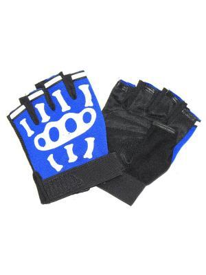 Перчатки спортивные Eleon. Цвет: черный, синий, белый