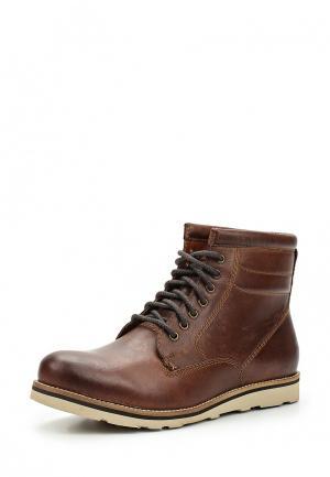 Ботинки Superdry. Цвет: коричневый