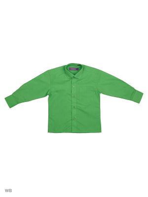 РУБАШКА ДЕТСКАЯ CARAT.. Цвет: зеленый