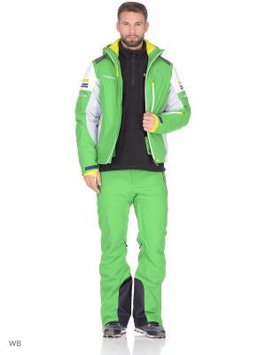 Куртка Stayer. Цвет: зеленый, серый