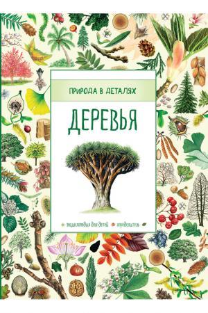 Деревья. Природа в деталях Росмэн. Цвет: зеленый