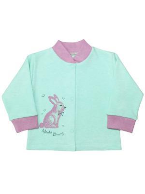 Кофточка Веселый малыш. Цвет: светло-зеленый,розовый