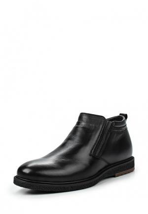 Ботинки классические Quattrocomforto. Цвет: черный