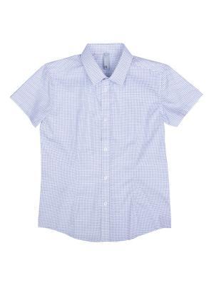 Сорочка S`Cool. Цвет: серый, белый
