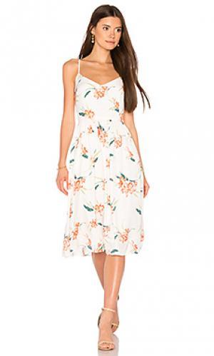 Платье lila BB Dakota. Цвет: белый