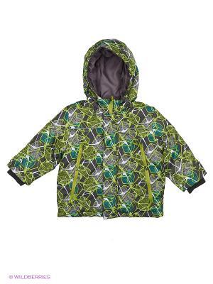 Куртка Hippo Hoppo. Цвет: салатовый, темно-серый