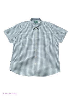 Рубашка Greg Horman. Цвет: зеленый