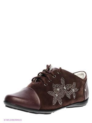 Ботинки Noto Kids. Цвет: коричневый