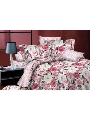 Комплект постельного белья евро, поплин BegAl. Цвет: розовый