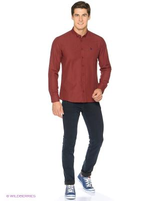 Рубашка U.S. Polo Assn.. Цвет: бордовый