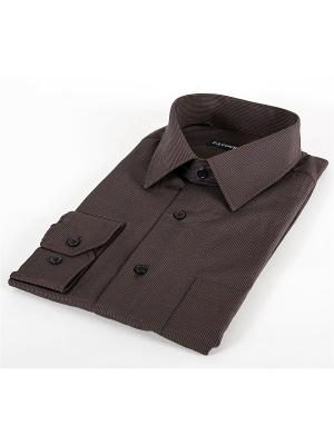 Рубашка Favourite. Цвет: коричневый