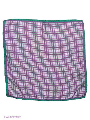 Платок-паше Troy collezione. Цвет: фиолетовый