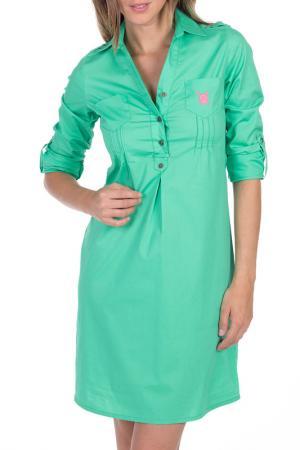 Платье Polo Club Original. Цвет: зеленый