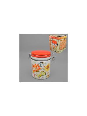 Банка для сыпучих продуктов ЭЛЛИ-БЕРРИ MOLENTO. Цвет: оранжевый, белый