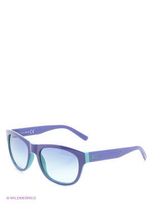 Солнцезащитные очки JC 559S 83W Just Cavalli. Цвет: фиолетовый, серо-голубой, голубой
