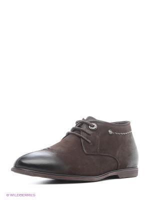Ботинки Franco Bellucci. Цвет: темно-коричневый