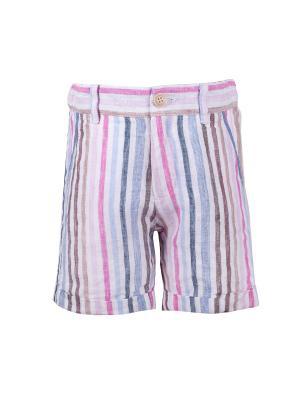 Шорты Gulliver Baby. Цвет: голубой, розовый, светло-коричневый