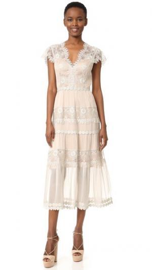 Платье Gwyneth из шелкового шифона и металлизированного кружева Catherine Deane. Цвет: серебристый/миндальный