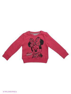 Свитшот Minnie Mouse. Цвет: розовый