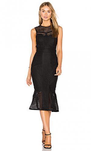 Платье jessa Bardot. Цвет: черный