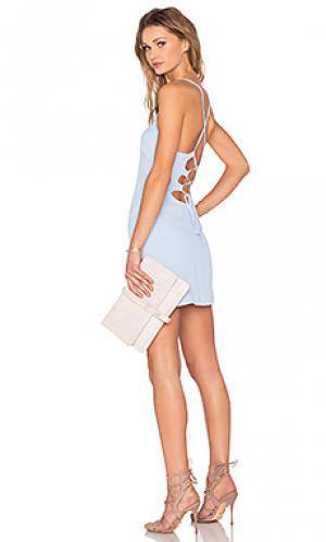Обтягивающее платье lauren NBD. Цвет: синий