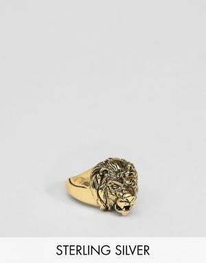 ASOS Серебряное кольцо с головой льва золотым покрытием DESIGN. Цвет: золотой