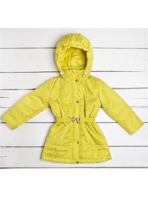 Пальто Arctic Kids. Цвет: горчичный, золотистый