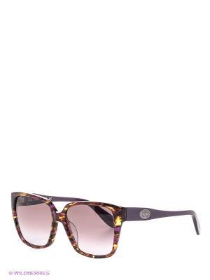 Очки солнцезащитные LM 501 03 La Martina. Цвет: фиолетовый, коричневый