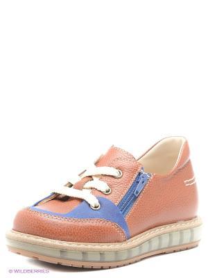 Ботинки TAPiBOO. Цвет: коричневый, синий
