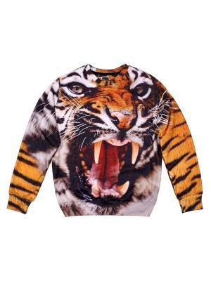 Свитшот Angry Tiger FUSION. Цвет: черный, белый, светло-оранжевый