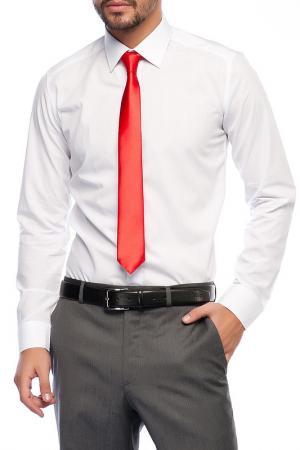 Рубашка Saint loren. Цвет: белый