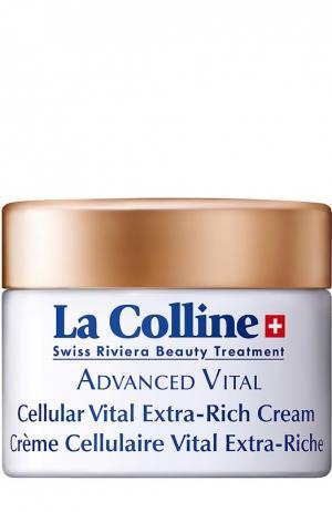 Концентрированный восстанавливающий крем с клеточным комплексом La Colline. Цвет: бесцветный