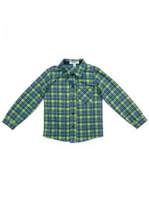Рубашка PlayToday. Цвет: синий, зеленый