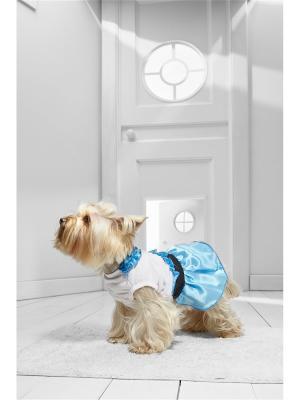 Платье с пышной юбкой для миниатюрных пород собак весом 2-4 кг и длиной по спинке около 25 см Nothing but Love. Цвет: белый, голубой, черный