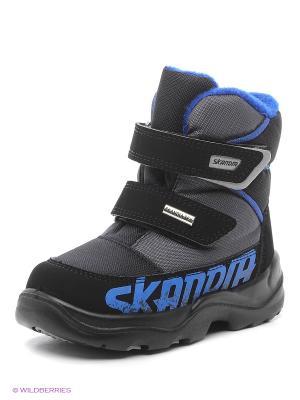 Ботинки Skandia. Цвет: синий, антрацитовый