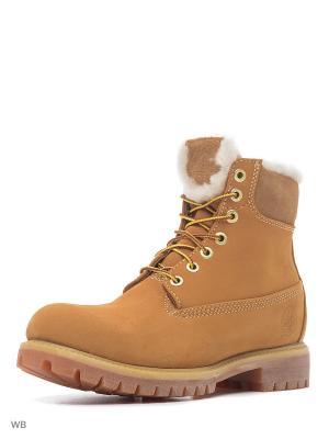 Ботинки TIMBERLAND. Цвет: светло-коричневый, бежевый